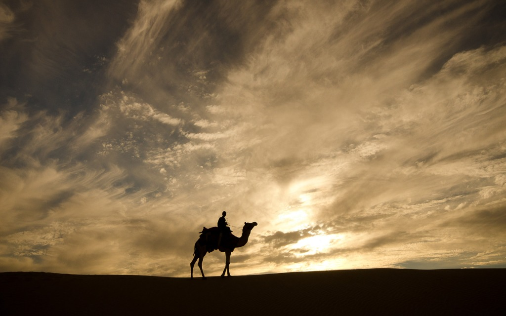 """Camel Safari in the Thar Desert, India"" by Sarah Kossak"