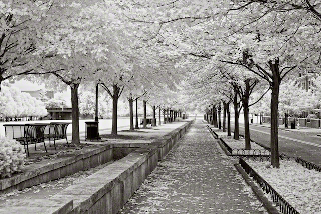 """McPherson Commons"" by Aaron Sheldon. Shot with IR-converted Canon Rebel T3i."