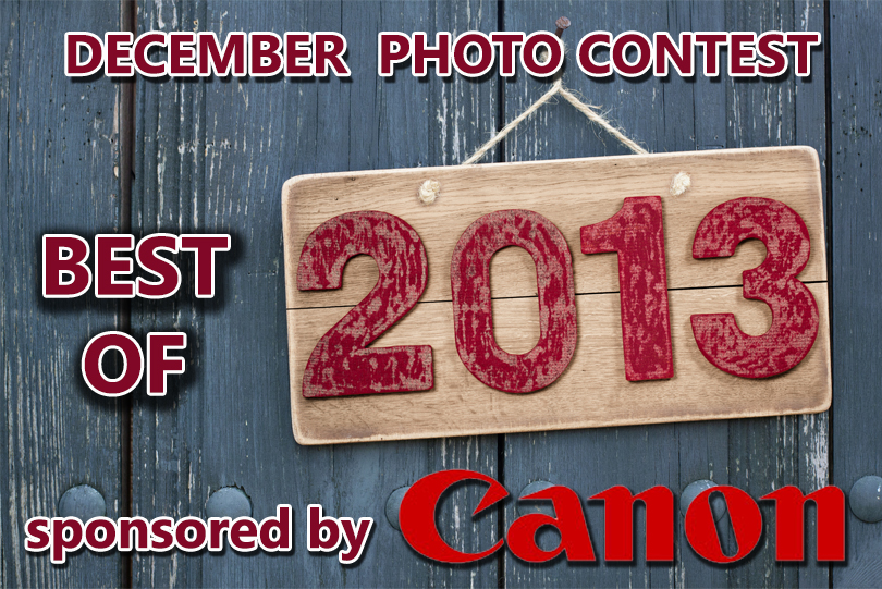 December 2013 Contest Image