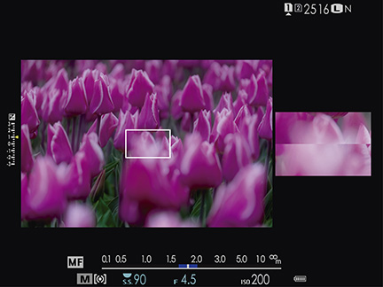 Inside the EVF is one of the best viewing experiences available on any digital camera today.